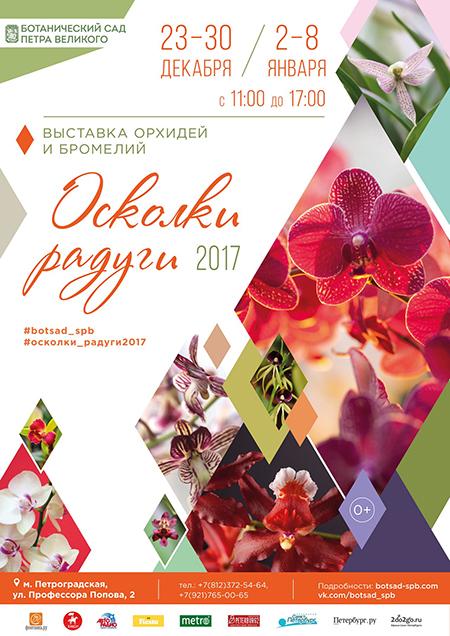 Крупнейшая в стране выставка орхидей в Ботаническом саду Петра Великого
