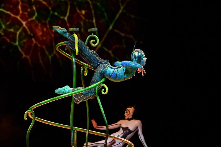 Микрокосмос у наших ног – гастроли Cirque du Soleil в России