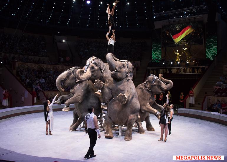 """Первый Международный фестиваль циркового искусства """"На Фонтанке"""""""