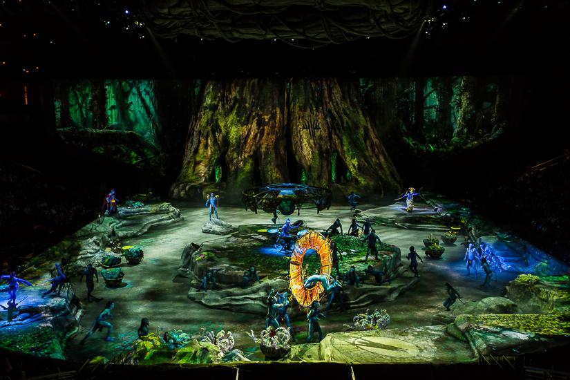 Шоу Cirque du Soleil «ТОРУК – Первый полет»