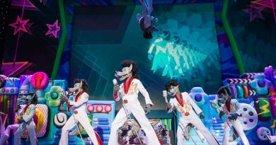 Новогоднее шоу «Ну, погоди! Поймай звезду» пройдет в Санкт-Петербурге