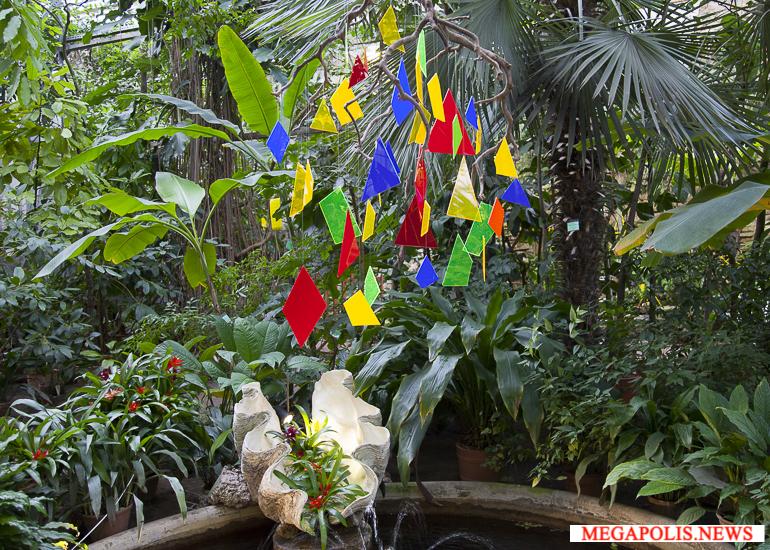 «Осколки радуги»: выставка орхидей 2018