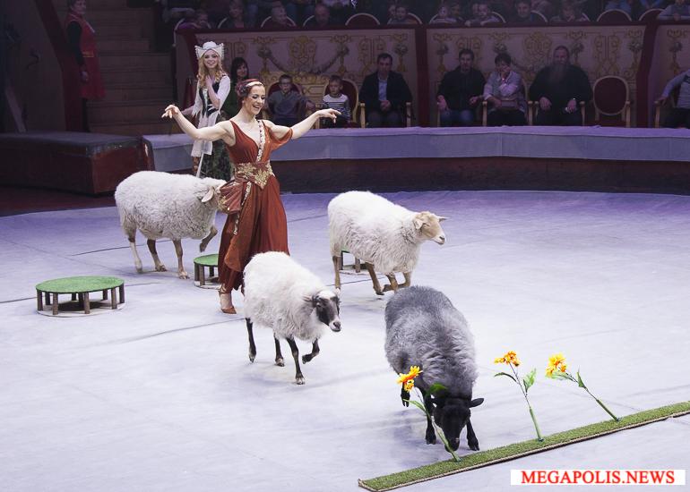 Новогодняя сказка «Золушка» в цирке на Фонтанке
