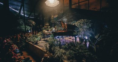 Музыкальные вечера и DJ-сеты в Ботаническом саду